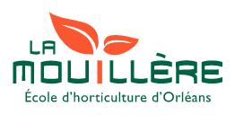 45 - La Mouillère
