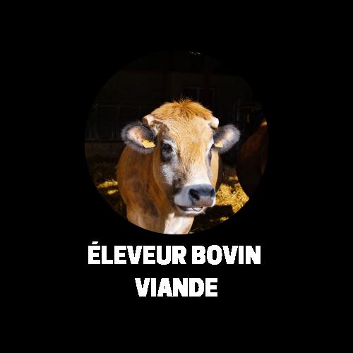 Eleveur Bovin Viande