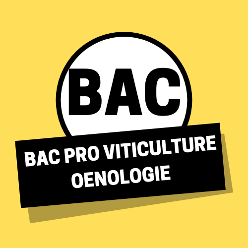 Bac pro Viticulture Oenologie